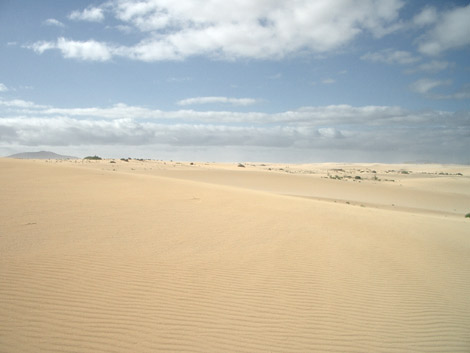 Dünengebiet von Corralejo